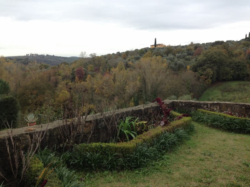 View from Maestro's back yard - beginnings of Autumn